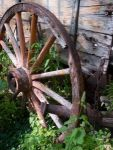 wagon-wheel-343204-m
