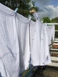 fresh-laundry-1209862-m