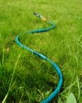 hose-pipe-1624399