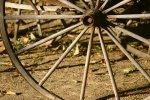 Wagon Wheel - Set Up Adventure