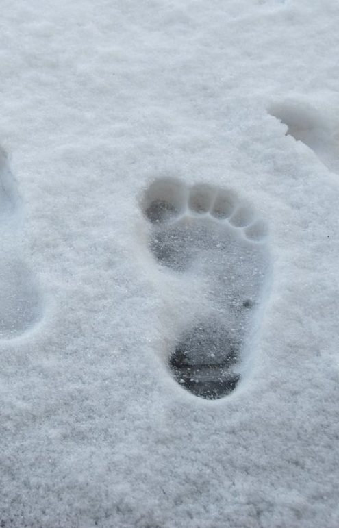 Snowy Footprint -Smuggling Hertzmer Adventure